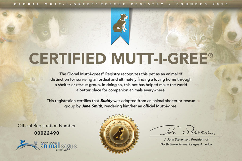 Mutt-i-grees Get Their Papers