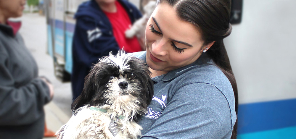 North Shore Animal League America | World's Largest Animal Rescue Org