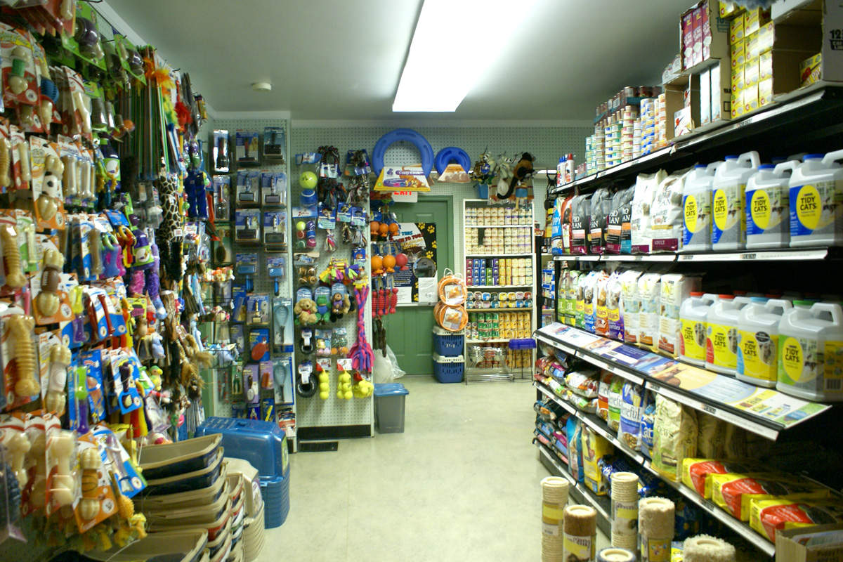 how to open a pet supply store