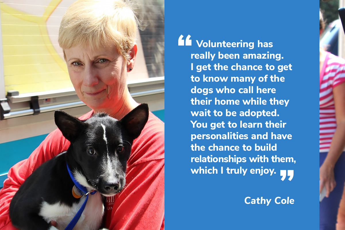 Volunteer at North Shore Animal League America | Animal League