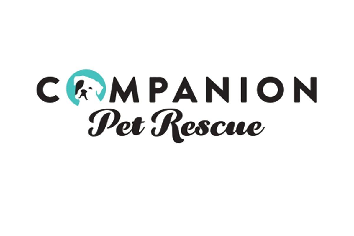 Companion Pet Rescue At Petsmart Meriden Ct Animal League