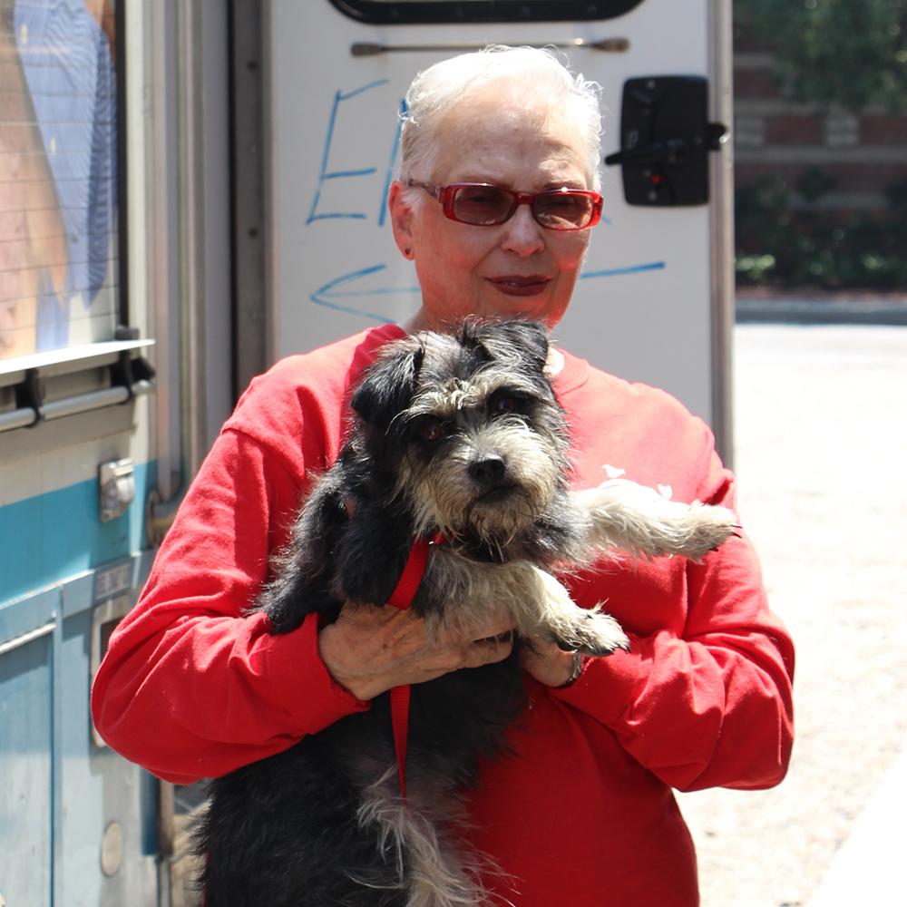 Dog Adoption Little Rock Arkansas