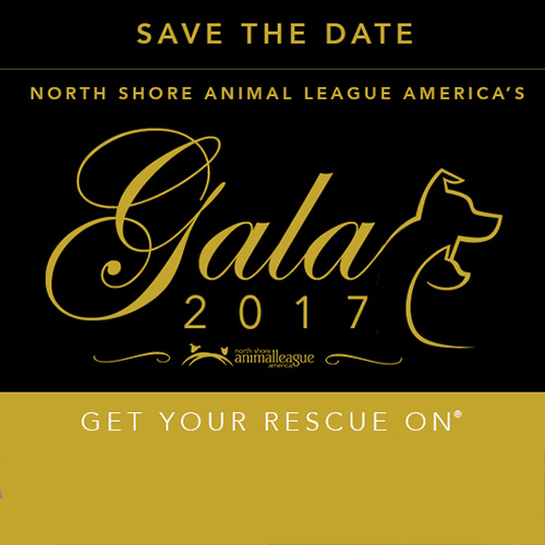 Get Your Rescue On Gal 2017