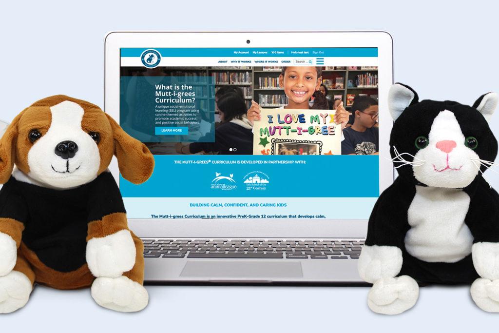 The Curriculum's New Website