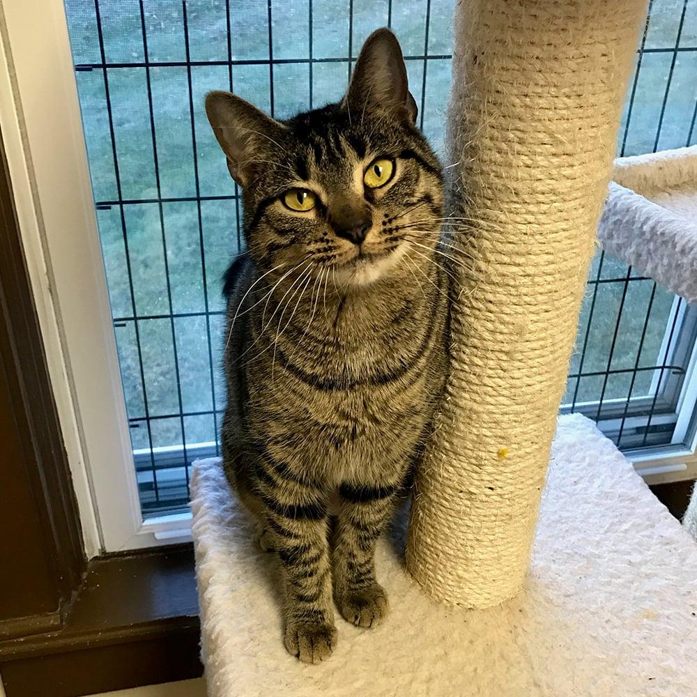 Meet Mikayla