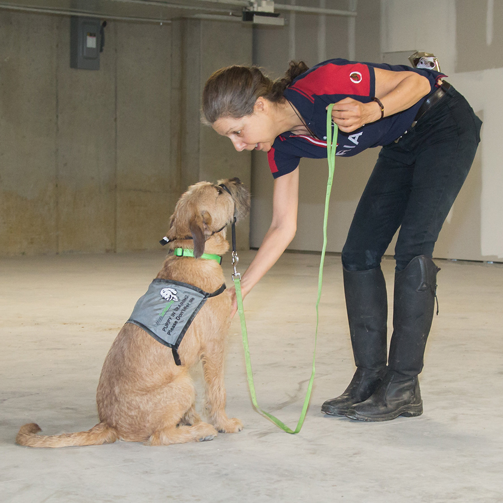 Benji with trainer