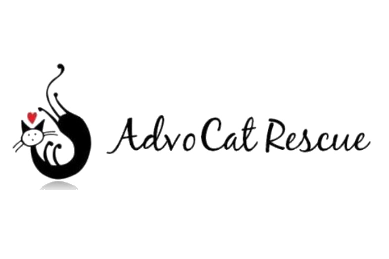 AdvoCat Rescue at Petco, College Point, NY | Animal League