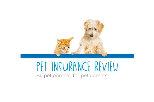 Pet Insurance Review