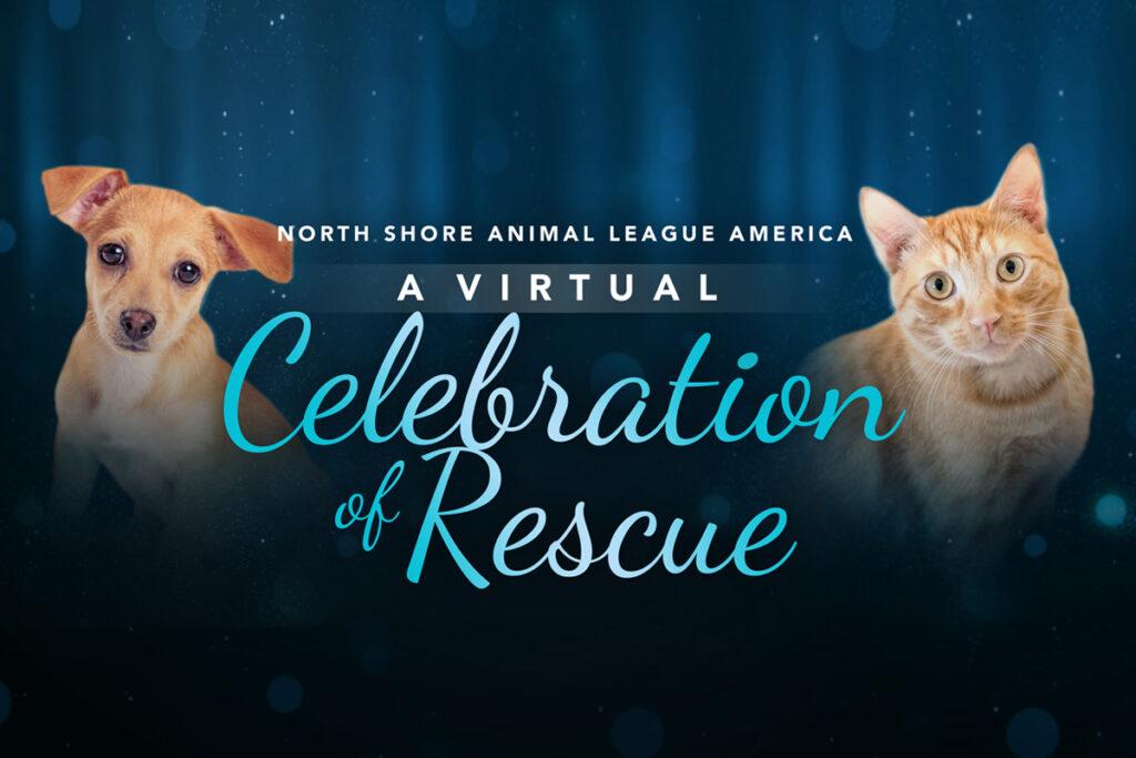 A Virtual Celebration of Rescue