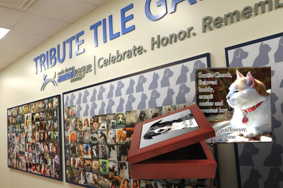 Tribute Gifts - Tribute Tile